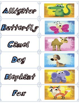 animal flash cards 1