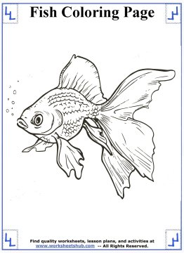 fish coloring pages 5