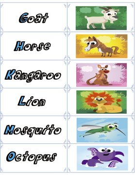animal flash cards 2
